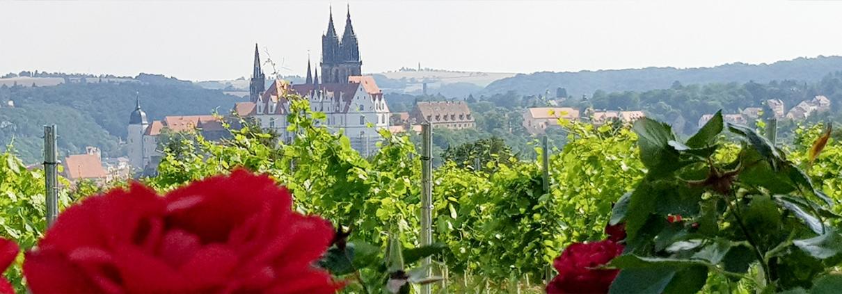 Veranstaltung Schloss Proschwitz